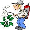 Lakossági felhívás - rovarok elleni védekezésről